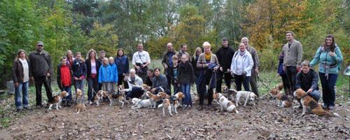 Gruppenbild Beagles vom Deistertal in Gifhorn 2013