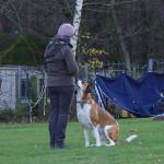Kristina mit ihrem Hund Fanny im RallyO Parcours