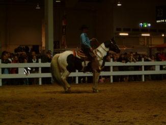 Messe Pferd & Jagd